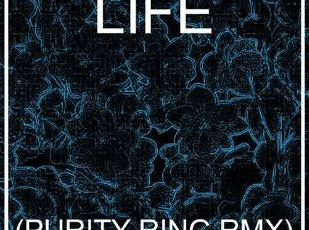 Nardwuar Purity Ring